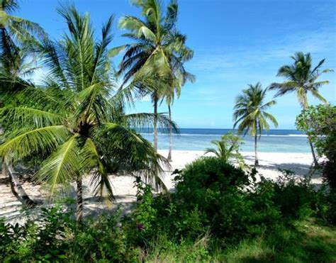 Coral Cove Cottages by Coral Cove Cottages Tiwi Kenya Kul 252 Be Yorumlar箟