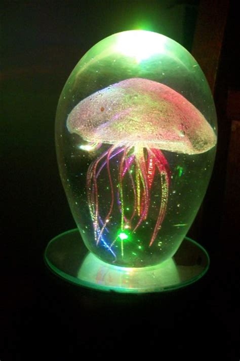 Jelly Pink Arbutin Glowing free pink jelly fish glow in the led l way cool home decor listia auctions