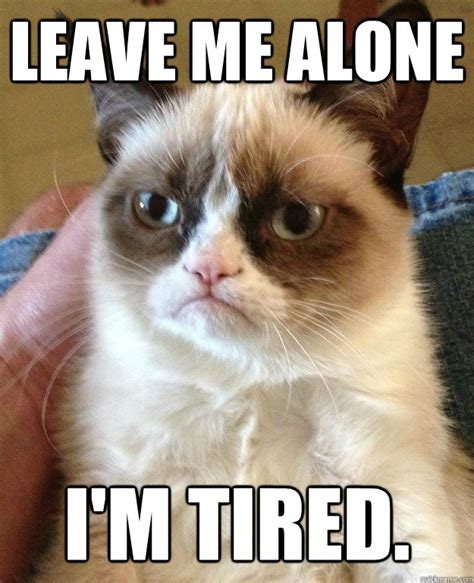 Tired Cat Meme - leave me alone i m tired grumpy cat quickmeme