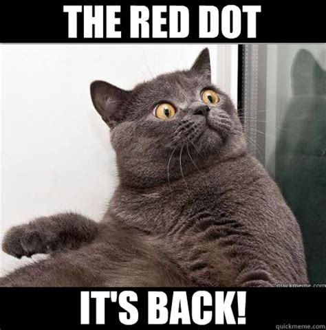 Shocked Meme - follow the red dot memes