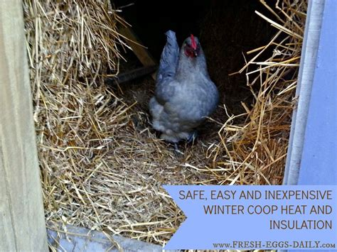 when to use a heat l for chickens bedding for chickens safe and easy winter coop heat and