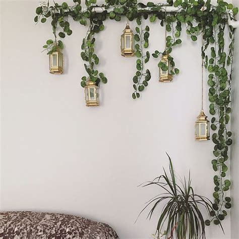 hanging plants strands and plants on pinterest