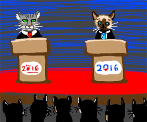 grumpy cat for president 2016 grumpy cat president and lil bub for vp 2016 drawception