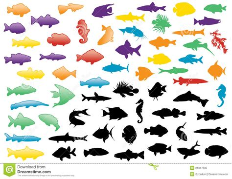 White Banister Rail Fish Silhouettes Illustration Set Royalty Free Stock