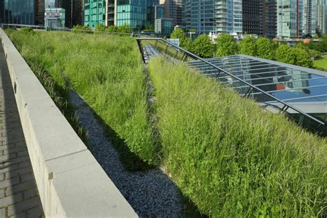 living green roof advantages green roof types advantages disadvantages