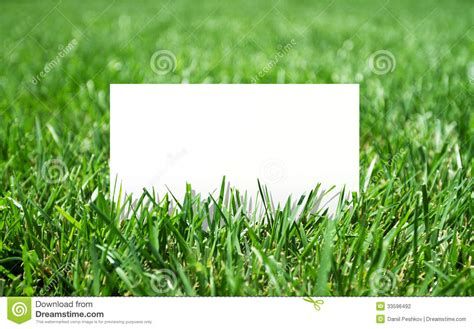 Grass Paper - grass and paper stock photography image 33596492