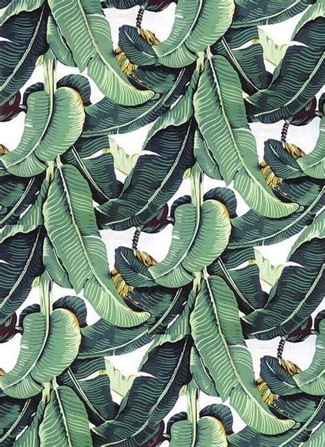 banana palm wallpaper banana palm wallpaper google search leaf wallpaper