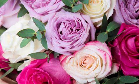 il significato dei colori dei fiori linguaggio dei fiori i significati dei colori delle
