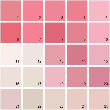 pink paint colors benjamin paint colors pink palette 09 house
