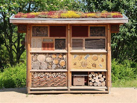 wildbienenhotel bauen anleitung insektenhotel insektenhotels infos zum selber bauen