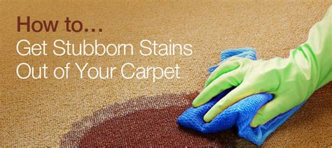 how to clean stubborn carpet stains with an iron and how to get stubborn stains out of your carpet bunzl