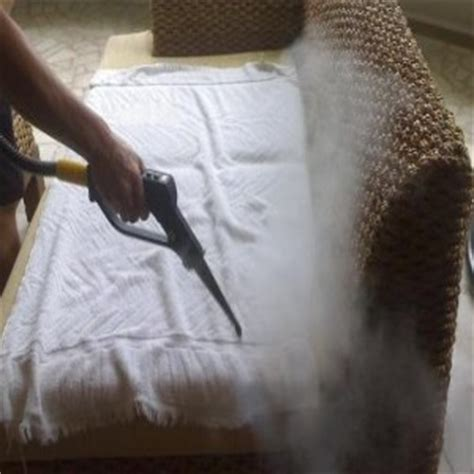 killing bed bugs with steam 9 home remedies to kill bed bugs natural treatments