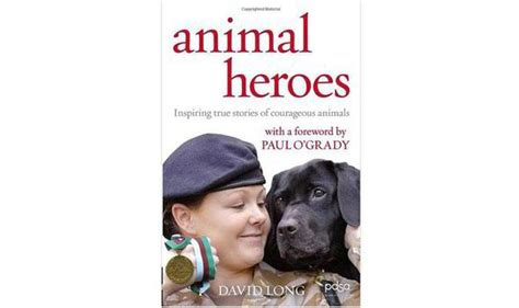 animal heroes books book review animal heroes by david books