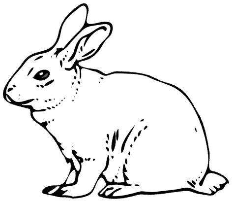 printable rabbit images rabbit coloring page jacb me