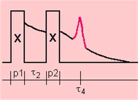 define free induction decay solomon echo nutation nmr references