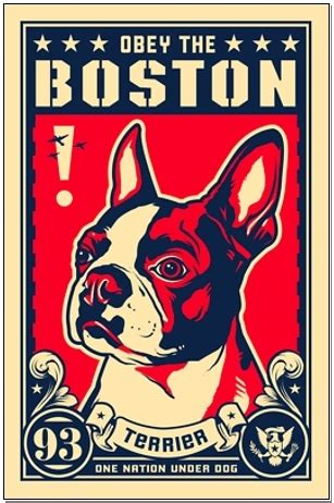 10 Cool Posters To Spruce Up Any Wall by Obey The Boston 10 Cool Posters To Spruce Up Any Wall