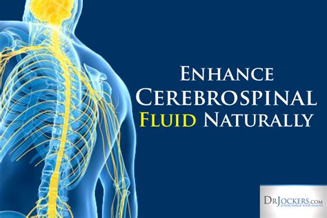 Detoxing The Csf by Enhance Cerebrospinal Fluid Flow Naturally