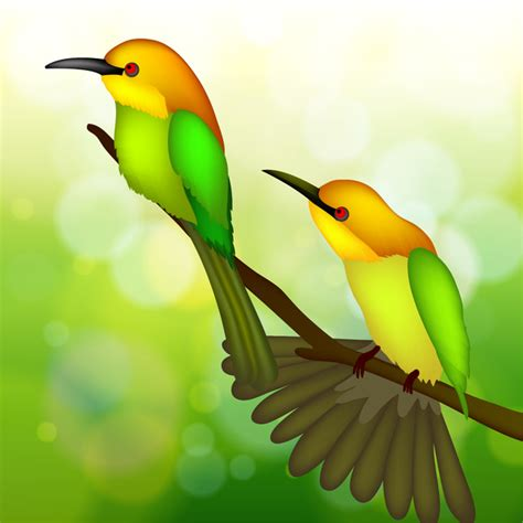 Two Birds two bird on tree branch free vector in adobe illustrator