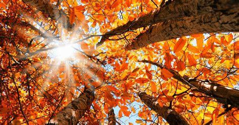 fall equinox autumnal equinox