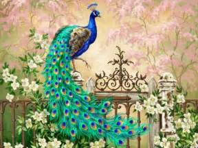 Top 100 most beautiful and colorful pictures of peacock hd images