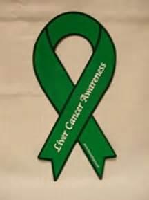 liver cancer awareness ribbon magnet other
