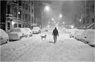 the blizzard of 1996 blizzard pooch 1996 copy black and white