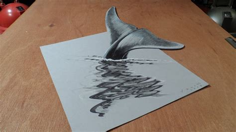 3d drawing 3d drawings 15 fish 3d drawings