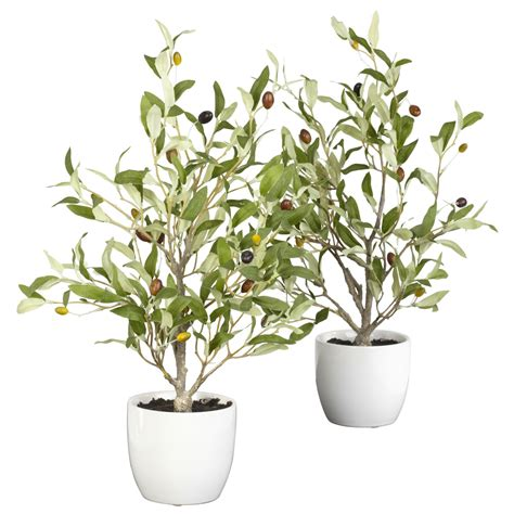 silk plants 18 inch olive tree in vase set of 2 4774 s2 nearly