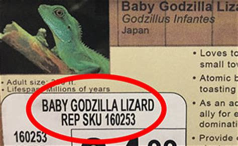 funny fake names guy replaces pet names in local pet store with new
