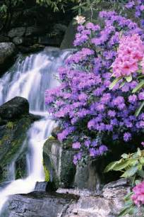 beautiful waterfalls with flowers pics for gt beautiful flowers and waterfalls