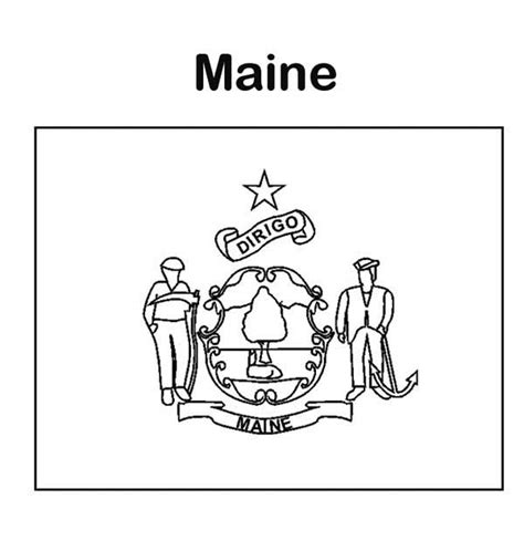 maine state tree coloring page coloring pages