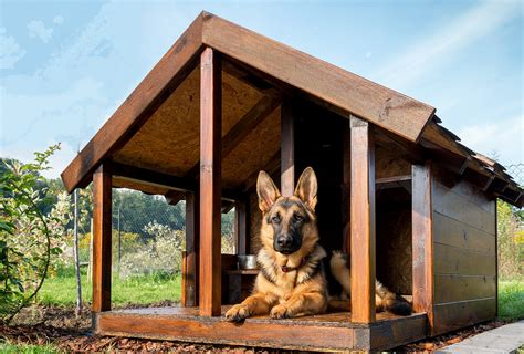 German Shepherd House Plans 28 Images самостоятельно German Shepherd House Plans