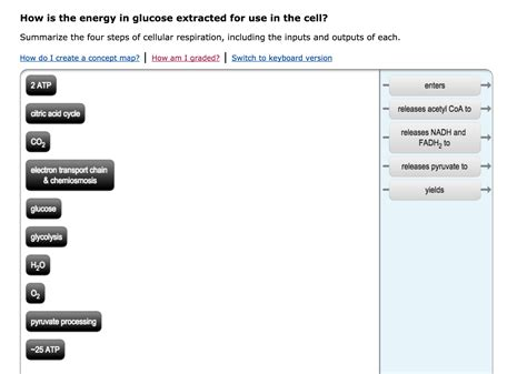what is the energy how is the energy in glucose extracted for use in