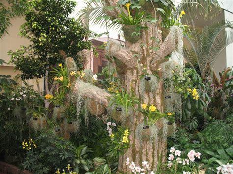 Missouri Botanical Garden Events Missouri Botanical Garden Events Missouri Botanical Garden Events At Mbg Gardenland Express