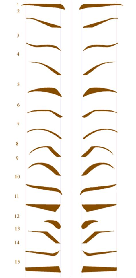 template for eyebrows everythinghealth desired shape of the eyebrow