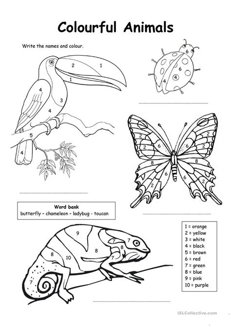 esl numbers coloring pages colour by numbers colourful animals worksheet free esl