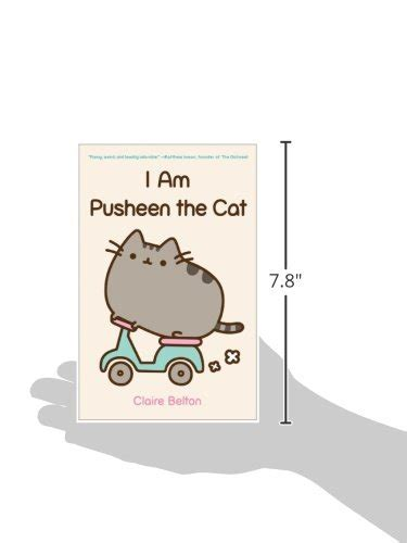 i am a cat books i am pusheen the cat desertcart