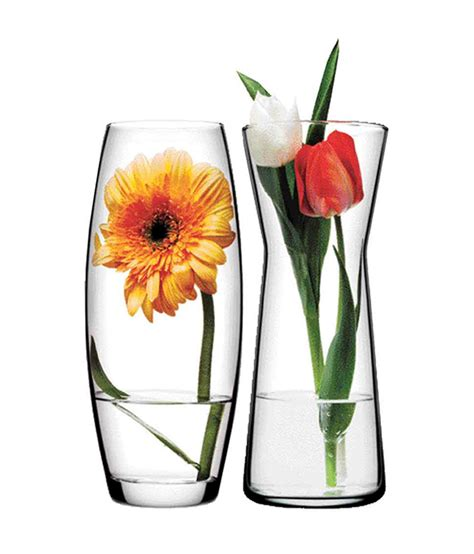 Vases At by Glass Vases With Flowers Beautiful Square Green Plastic