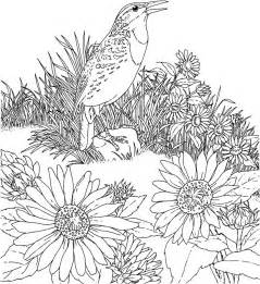 sunflower coloring page free printable sunflower coloring pages for