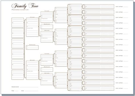 printable family tree charts 6 generation pedigree chart white templates pinterest