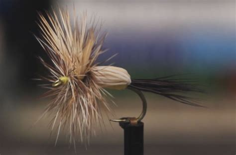 yellow humpy pattern video how to tie the yellow humpy orvis news