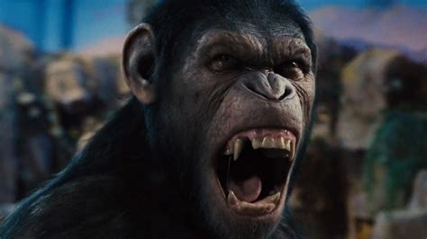 of the planet of the apes why aren t the apes in of the planet of the apes