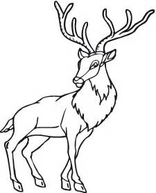 Deer Coloring Pages sketch template