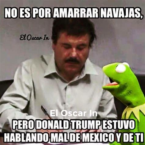 imagenes mamonas de mexicanos memes de ranas imagenes chistosas