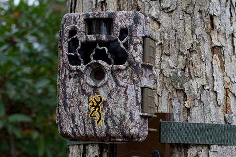 trail cam pro trail camera scouting basics pro tips by dick s