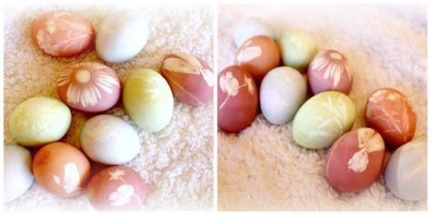 all flower food all easter egg dye using fresh flowers and
