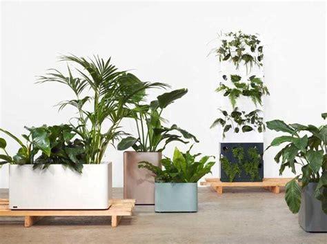 indoor plant stands pots  hangers