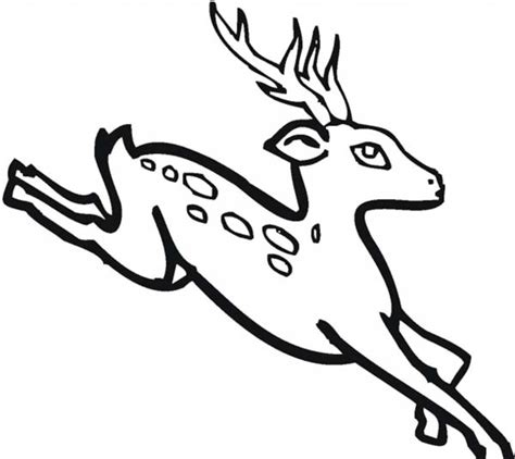 running deer coloring page free coloring pages of running turtle