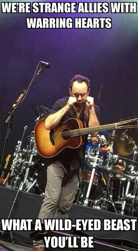 Dave Matthews Band Meme - 2428 best dmb images on pinterest dave matthews band
