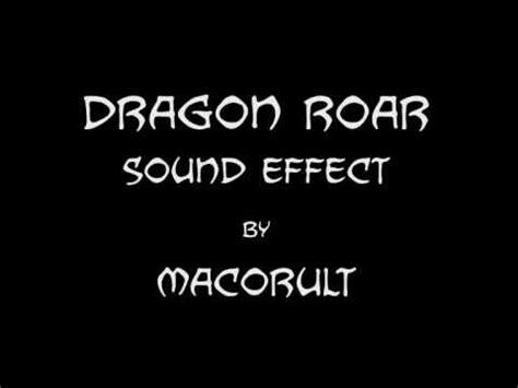 Jaguar Roar Sound Effect Panther Roar Sound Effect Funnycat Tv